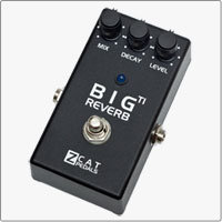 ZCAT The Big Reverb TI with Trails and nearly Infinite decay.